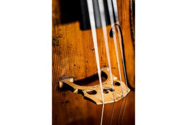 Detail photograph of a cello at J & A Beare in London