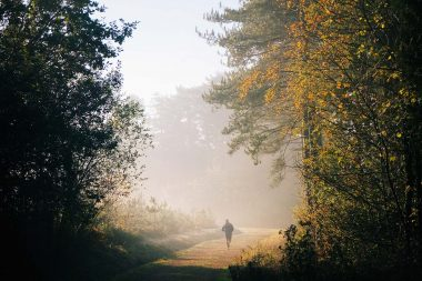 An advertising photograph of a runner in the woods
