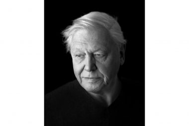 A portrait of the naturalist and presenter Sir David Attenborough in London