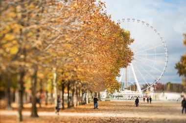 Photograph of ferris wheel in Paris France