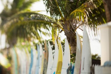 Lifestyle photograph of surf boards in a row in Barbados