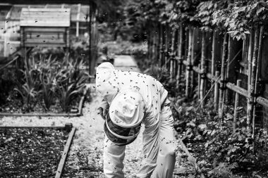 portrait-of-my-father-a-beekeeper-on-the-isle-of-wight