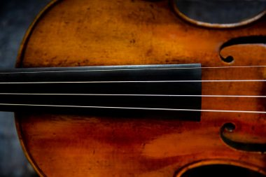 detail-of-violin-st-j-and-a-beare-ltd-london-by-richard-boll-photography